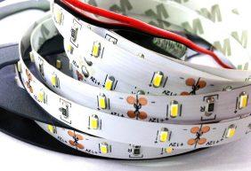 Bộ sưu tập đèn LED dây dán cao cấp